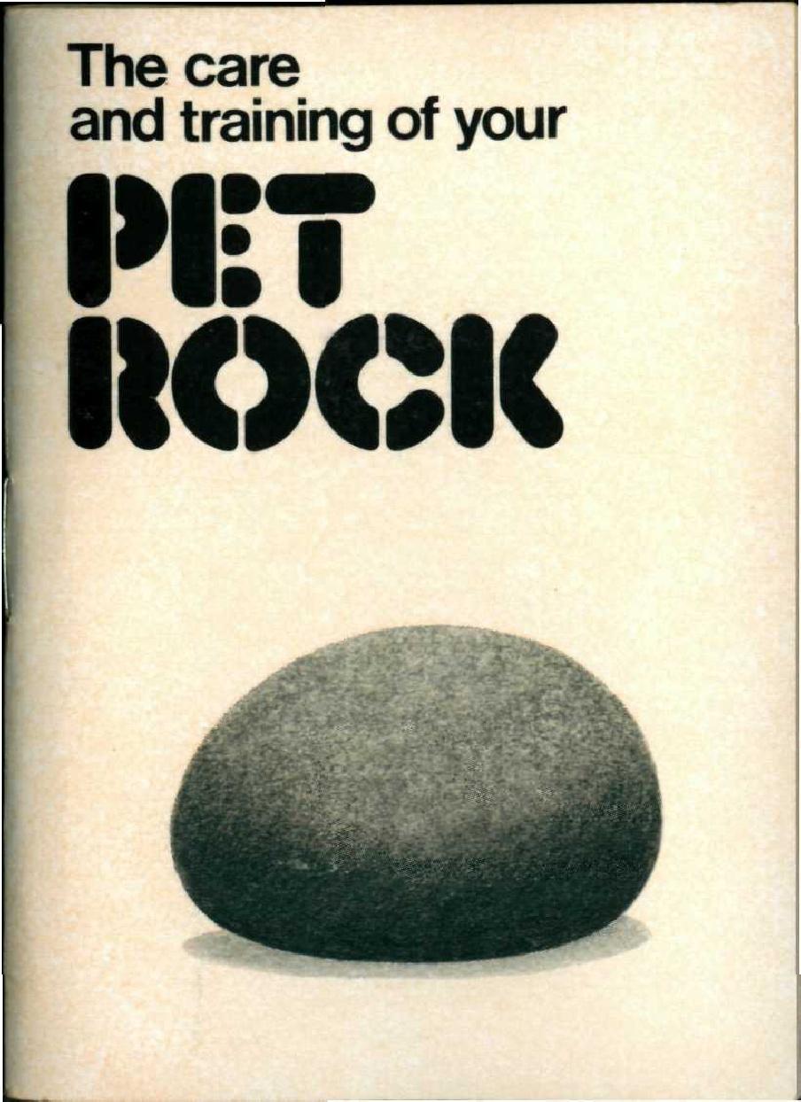 Pet Rock Training Manual