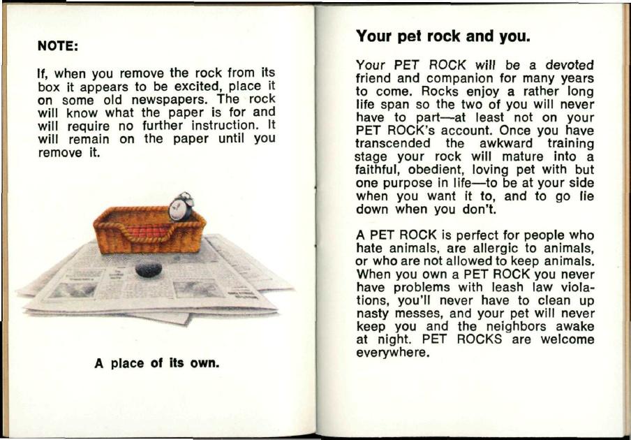Pet Rock – как заработать миллион, продавая обыкновенные камни