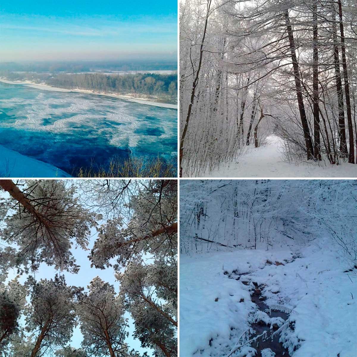 природа россии 2018