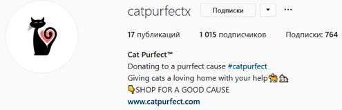 Пример оформления профиля в Инстаграме