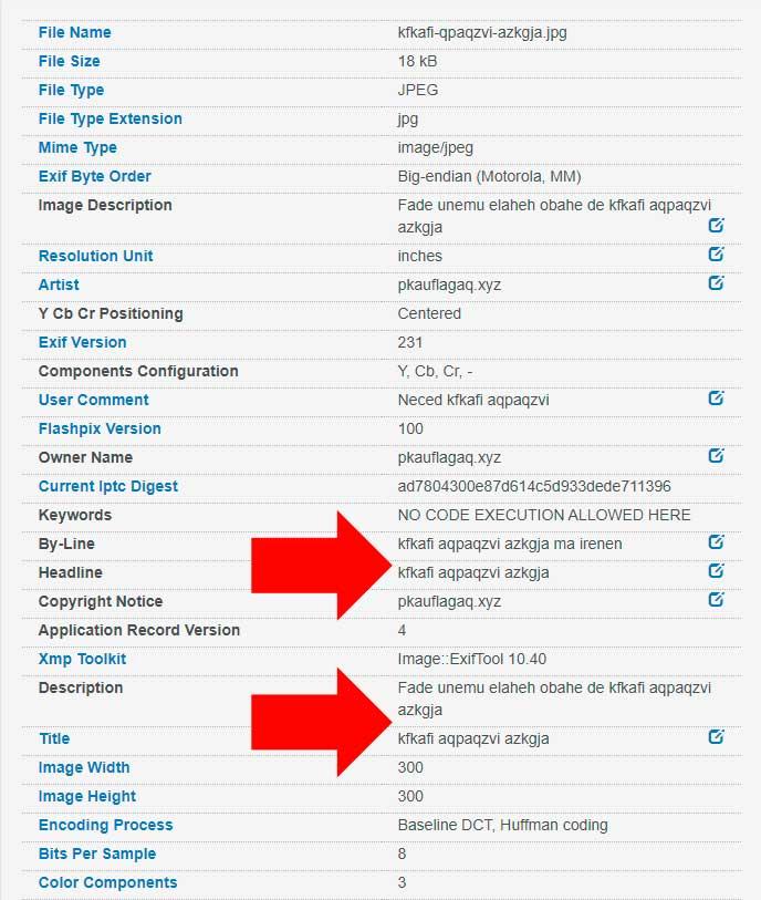 metadata2go.com