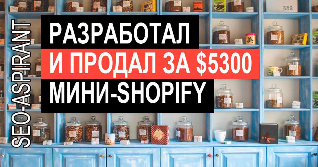 Как за 50 часов сделать мини-маркетплейс и продать его за 5300 долларов